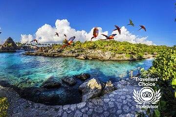 Priority Access: Xcaret Day Trip with Transportation