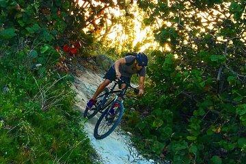 Guided Mountain Bike Trail Ride (Beginner Friendly)