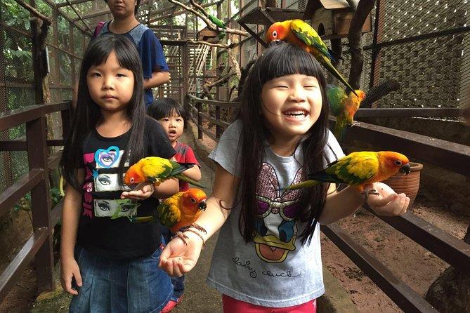 Skip The Line Kl Tower Mini Zoo Admission Ticket In Kuala Lumpur 2020