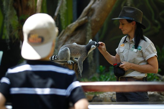 Currumbin Wildlife Sanctuary General Entry Ticket