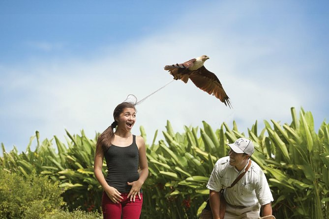 Bali Bird Park Admission Ticket