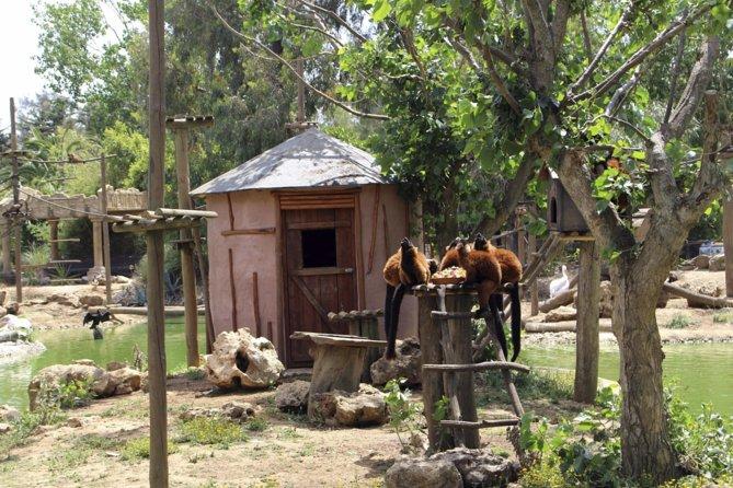 Lagos Zoo Admission Ticket
