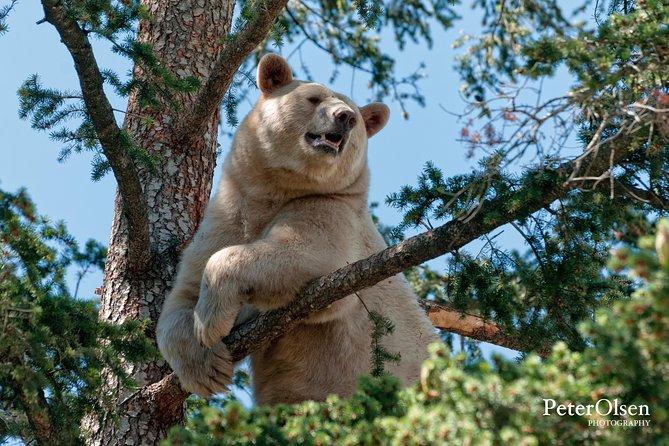 Kamloops BC Wildlife Park Admission