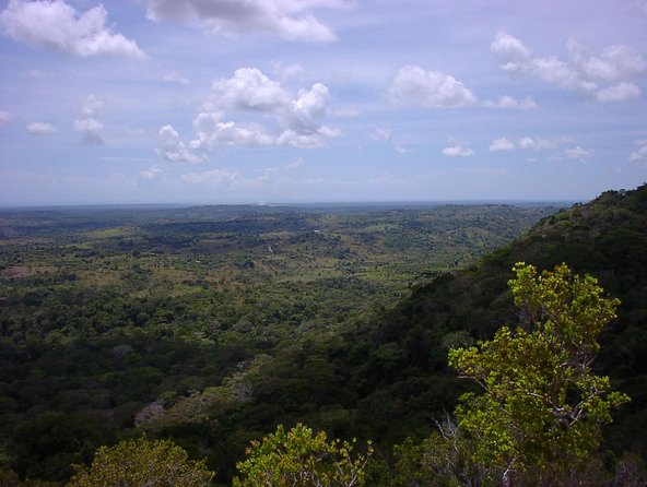 Small-Group Tour: Shimba Hills National Park from Diani Beach