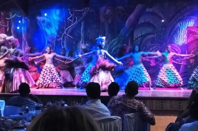 Safari Cat Dancers Show And Dinner photo 4