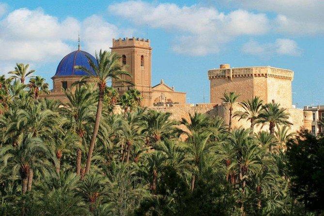 Experiencia de un día completo en Alicante que incluye una visita a Elche con traslados
