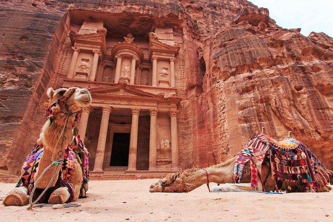 Petra and Wadi Rum: Southern Jordan Private Tour from Amman