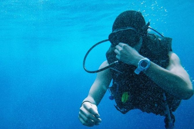 Scuba Diving Certification Montego Bay PADI photo 1