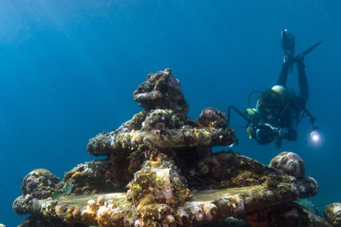 Scuba Diving Certification Montego Bay PADI photo 2