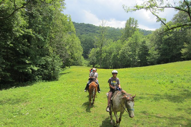 Guided Horseback Ride through Flame Azalea & Fern Forest