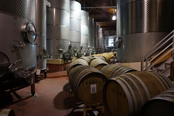 Tour of the wine making process in Santa Ynez