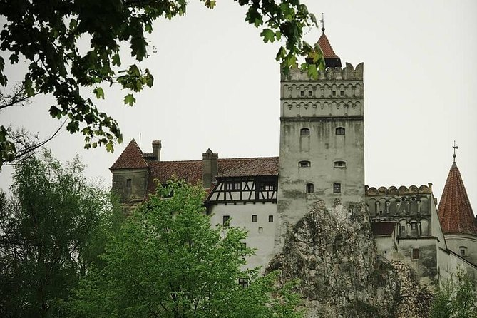 Brasov and Bran Castle Private Day Tour from Bucharest