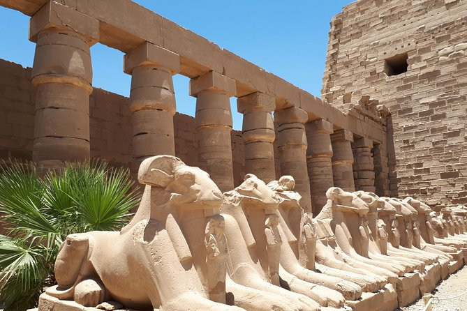 Private Tour from Luxor to East Bank - Karnak and Luxor Temples