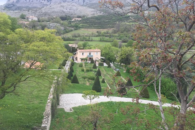 Full-day Private St Paul de Vence, Vence, and Matisse Church Tour from Nice