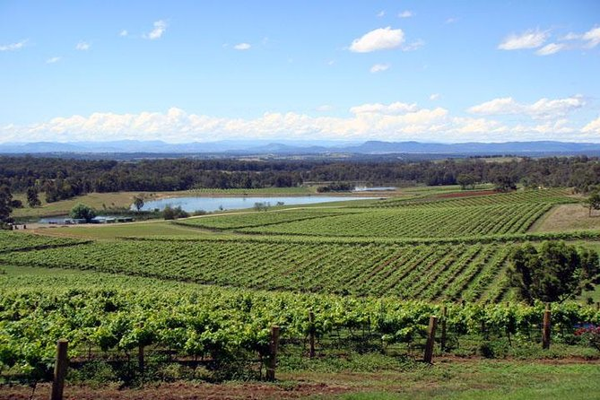 Private Hunter Valley Wine-Tasting Day Tour from Sydney