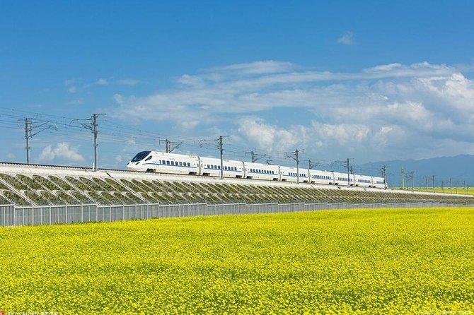 One Day Chengdu Xian Tour by Bullet Train