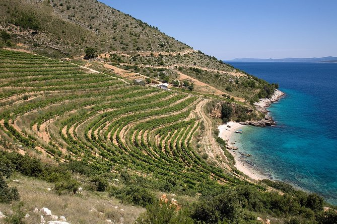8-Day Dalmatia Home of Zinfandel Grape Tour from Split