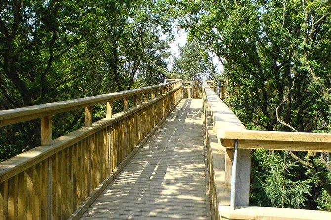 Tree Top Walk in Slovakia & Zakopane Private Tour From Krakow