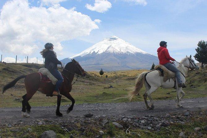 Cotopaxi National Park Horseback Ride Excursion