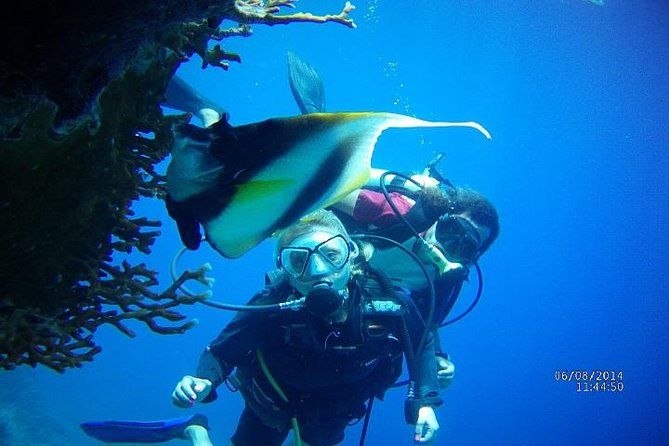 PADI 3 Days Open Water Course