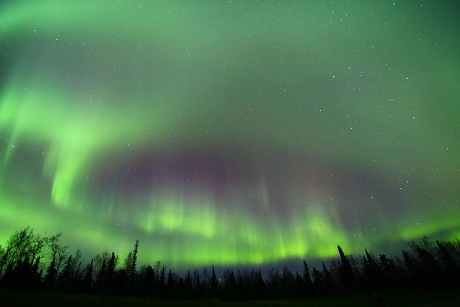 Northern Lights Murphy Dome Viewing in Fairbanks