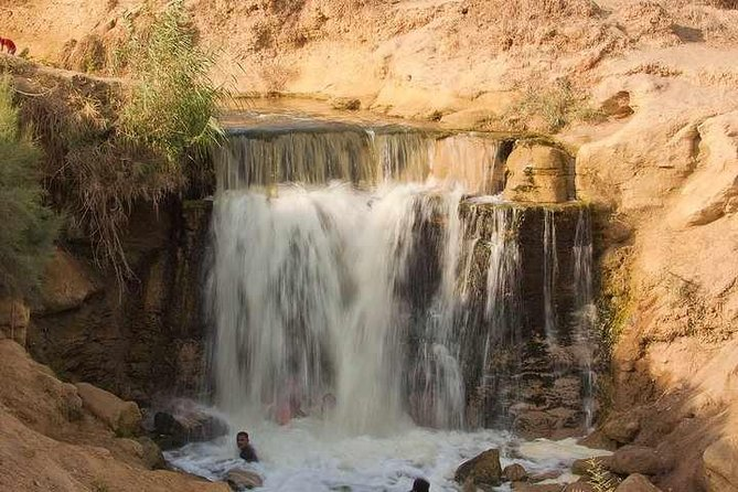 Valley of Whales and Wadi El Rayan Water Falls Day Tour from Cairo