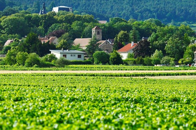 Burgundy 2 Day Private Tour from Paris