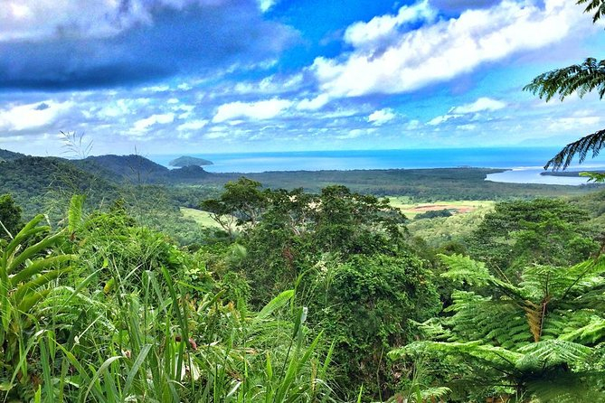 Private Daintree National Park Day Tour from Cairns Including Cape Tribulation and Mossman Gorge