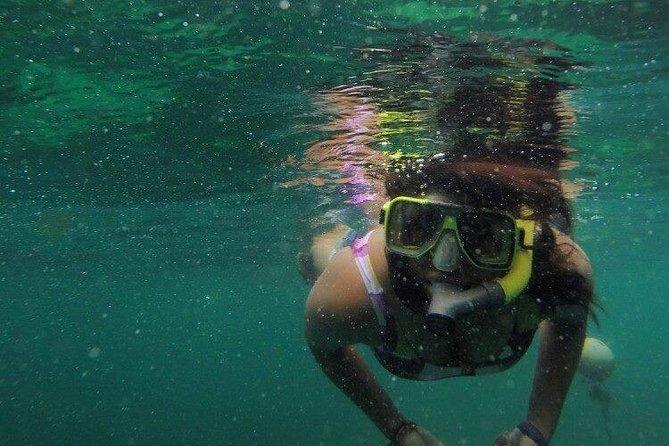 Full-Day Pulau Payar Snorkeling Tour from Langkawi