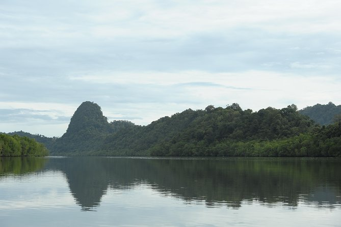 Mangrove River Cruise and Swimming Tour from Langkawi