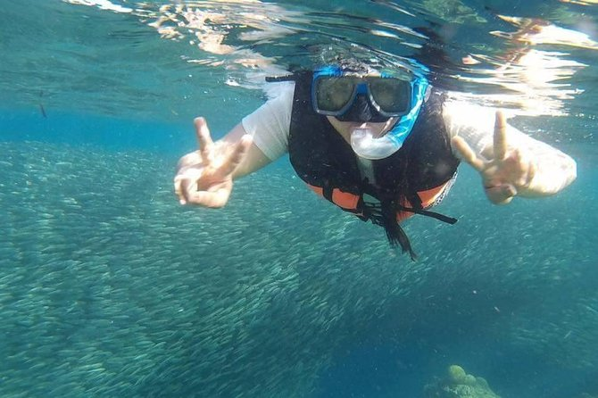 Moalboal Pescador Islandホッピングプライベートデイツアー