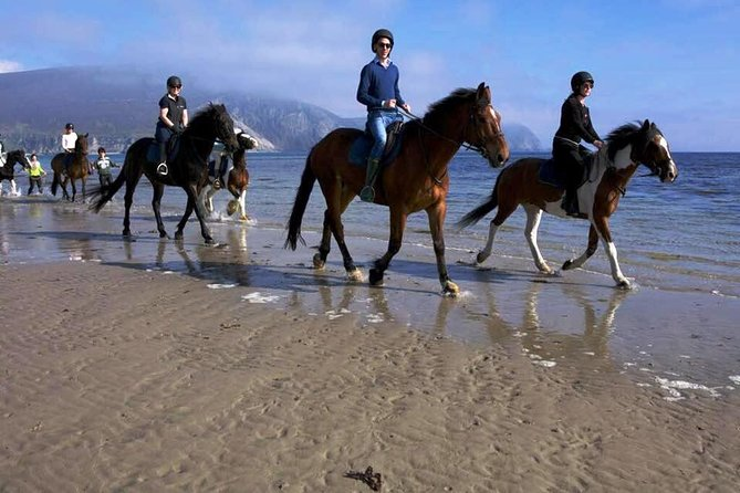Beach & countryside horse ride along a Connemara beach. Privately guided