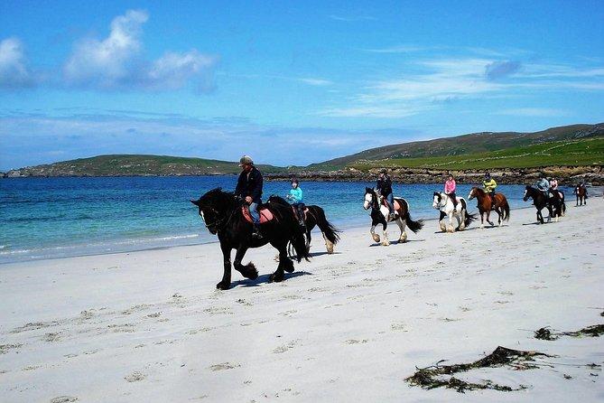 Private Half-Day Tour: Connemara Wild Atlantic Way Guided Beach Horseback Ride.