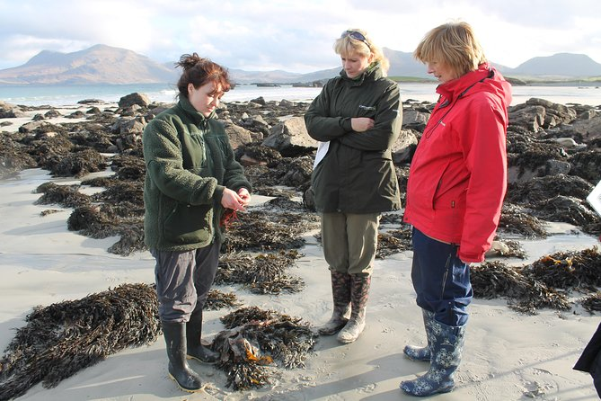 Connemara National Park, Beach & Blanket Bog ecology walk. Private Full-day