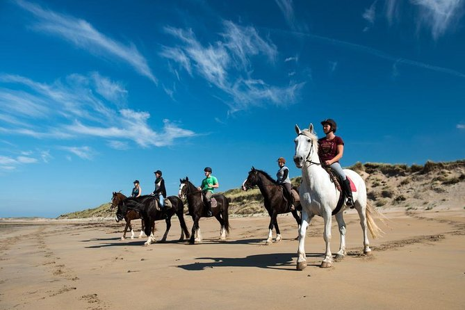Private Wild Atlantic Way Beach Horseback Riding Excursion from Galway-Full Day