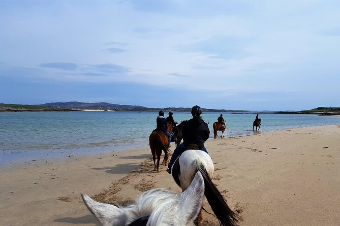 Shore Excursion: Private Full-day Beach Horseback Riding Excursion from Cleggan.