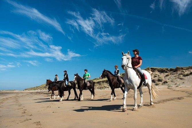 Shore Excursion: Private Wild Atlantic Way Omey Beach Horseback Ride, Cleggan