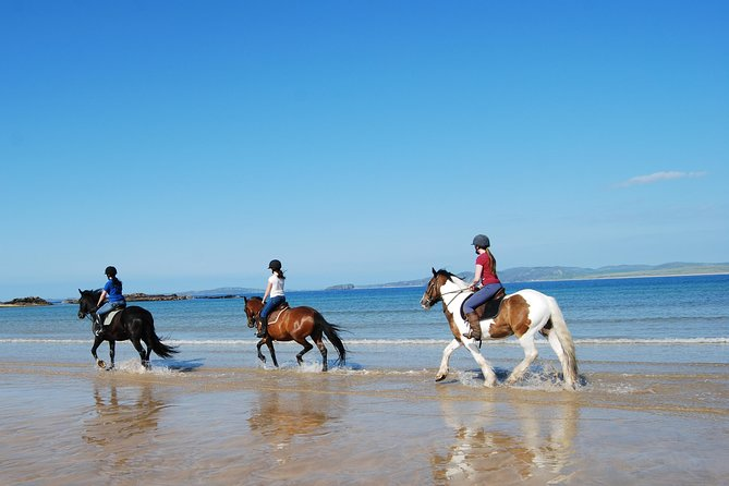 Private Half-Day Tour: Connemara Wild Atlantic Way Guided Beach Horseback Ride.