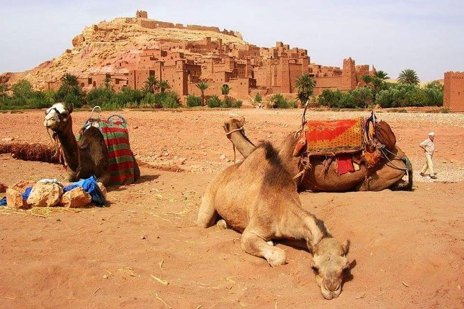 Moroccan Sahara Desert 3-Day Private Guided Tour from Marrakech photo 25