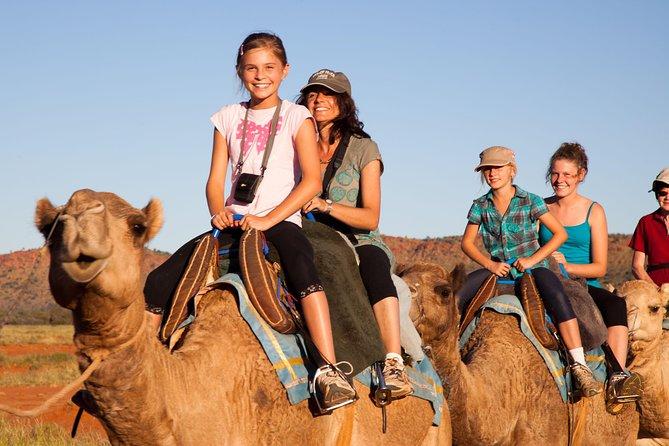 Alice Springs Camel Tour image