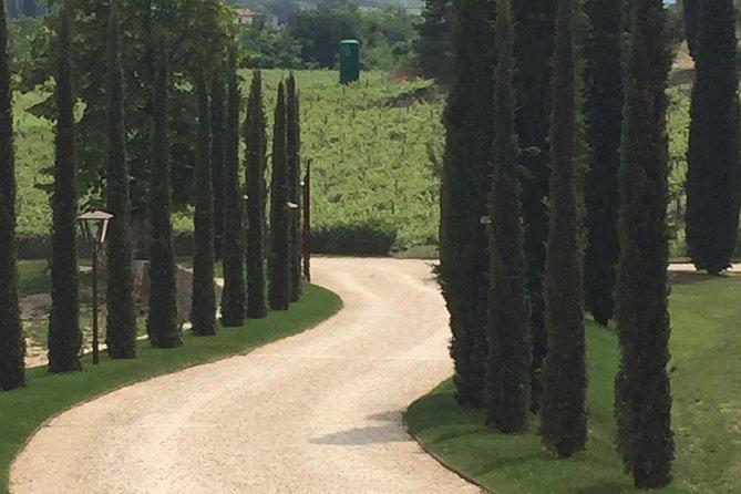 Venetië-plattelandstour met bezoek aan Valpolicella, wijnproeverij en lunch