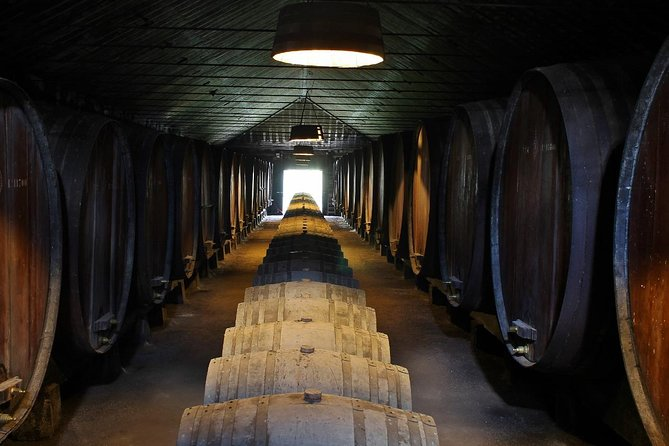 Lisbon Wine Tasting Private Tour in the Setubal Region