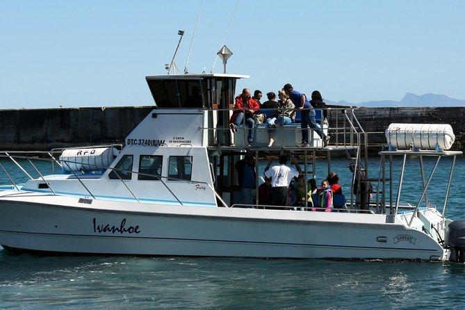 Big 5 Sea Safari in Walker Bay from Gansbaai