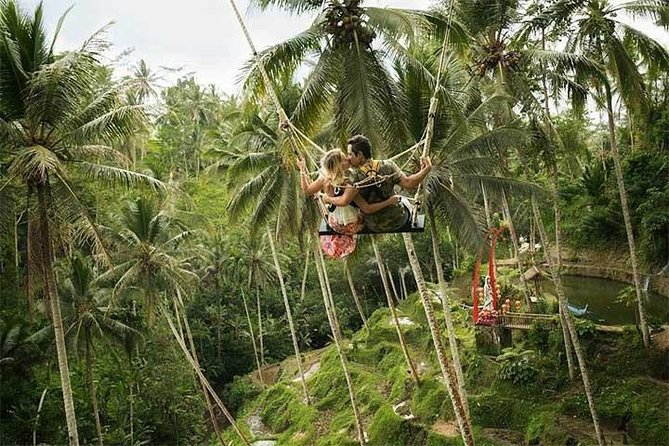 Ubud Swing and Ubud Village Tour