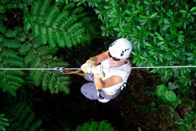 Half-Day Fiji Zip-line Tour from Nadi
