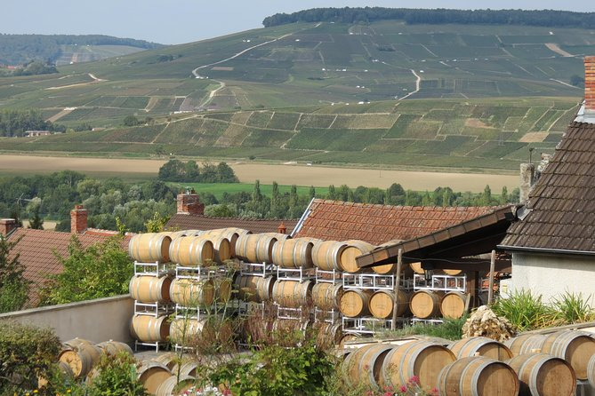 Private wine tour to Champagne region from Paris