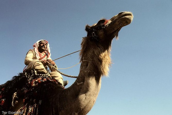 Two Days Camel Safari from Dahab