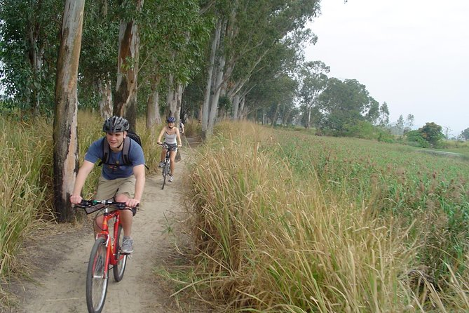 Tour di Hong Kong Cycling Day privato con Dim Sum