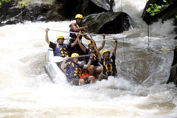 Full-Day Ayung River White Water Rafting and Ubud Tour