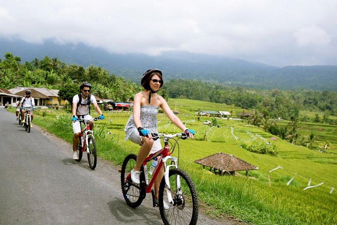 Jatiluwih Bali Unesco Rice Terraces Cycling Tour